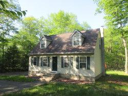 Photo of 376 Raymondskill Rd, Milford, PA 18337 (MLS # 18-2319)