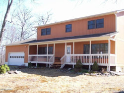 Photo of 217 Wild Meadow Dr, Milford, PA 18337 (MLS # 18-4346)