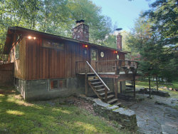 Photo of 123 W Shore Dr, Milford, PA 18337 (MLS # 19-3900)