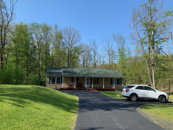 Photo of 102 Orchard Dr, Hawley, PA 18428 (MLS # 20-1553)