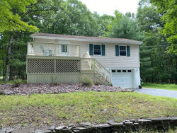 Photo of 115 Tink Wig Dr, Hawley, PA 18428 (MLS # 20-2963)