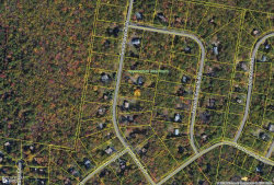 Photo of Lot 306 Southwynd Dr, Milford, PA 18337 (MLS # 16-2610)