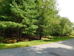 Photo of Lot 1083 Crocus Ln, Milford, PA 18428 (MLS # 18-3860)