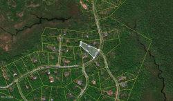 Photo of Conashaugh Trl, Milford, PA 18337 (MLS # 19-2840)