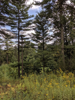 Photo of Lot 5 Highland Ave, Milford, PA 18337 (MLS # 19-4280)