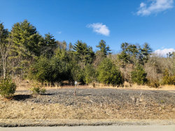 Photo of 115 Skyline Dr, Milford, PA 18337 (MLS # 19-4338)