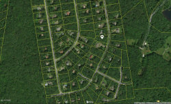 Photo of Lot 725 Locust Dr, Milford, PA 18337 (MLS # 20-4523)
