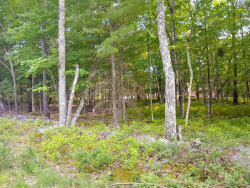 Photo of Lot 360 Lakewood Dr, Milford, PA 18337 (MLS # 20-4646)
