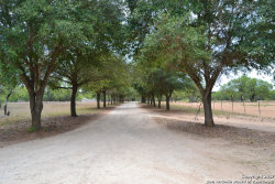 Photo of 355 Quail Run, Lytle, TX 78052 (MLS # 1261320)