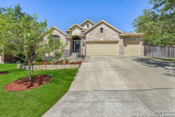Photo of 423 SAND ASH TRL, San Antonio, TX 78256 (MLS # 1263807)