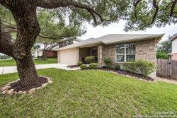 Photo of 407 LEOPARD CLAW, San Antonio, TX 78251 (MLS # 1275460)