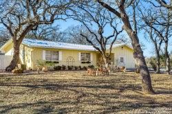 Photo of 1201 Crenwelge Dr, Fredericksburg, TX 78624 (MLS # 1287799)