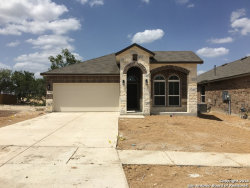 Photo of 13211 PANHANDLE COVE, San Antonio, TX 78253 (MLS # 1296658)