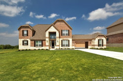 Photo of 541 Sittre Drive, Castroville, TX 78009 (MLS # 1300847)