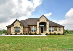 Photo of 546 Sittre Drive, Castroville, TX 78009 (MLS # 1303185)