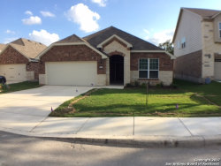 Photo of 10706 Cactus Way, Helotes, TX 78023 (MLS # 1323158)