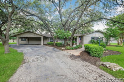 Photo of 119 DONELLA DR, Hollywood Pa, TX 78232 (MLS # 1339658)