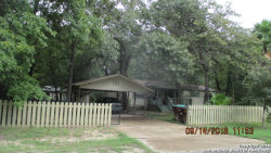 Photo of 3911 WILD CHINA DR, Elmendorf, TX 78112 (MLS # 1339731)