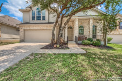 Photo of 15346 NESTING WAY, San Antonio, TX 78253 (MLS # 1391476)