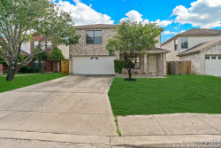 Photo of 1214 CROSSING OAKS, San Antonio, TX 78253 (MLS # 1484464)