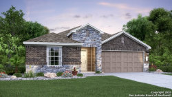 Photo of 15211 Maskette Ave, San Antonio, TX 78245 (MLS # 1485216)