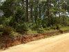 Photo of 0 County Road 65, Bonifay, FL 32425 (MLS # 685912)