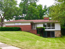Photo of 923 MAGNOLIA AVE, Royal Oak, MI 48073 (MLS # 21313739)