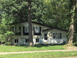 Photo of 50710 PEGGY LN, Chesterfield, MI 48047 (MLS # 21355869)