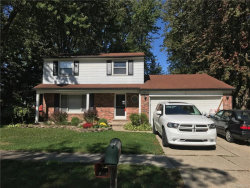 Photo of 23867 INDIANWOOD ST, Clinton Township, MI 48035 (MLS # 21380142)