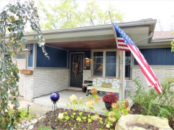 Photo of 54151 COUNTY LINE RD, New Baltimore, MI 48047 (MLS # 21386339)