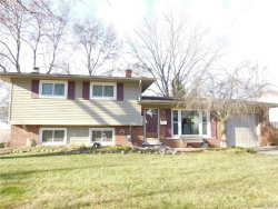 Photo of 21117 LARKSPUR ST, Farmington, MI 48336 (MLS # 21392763)