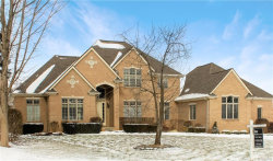 Photo of 8015 GRAND OAKS CRT, Washington, MI 48095 (MLS # 21408943)