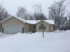 Photo of 463 N CONKLIN RD, Lake Orion, MI 48362 (MLS # 21412898)