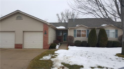 Photo of 7023 JESSICA CRT, Center Line, MI 48015 (MLS # 21414502)