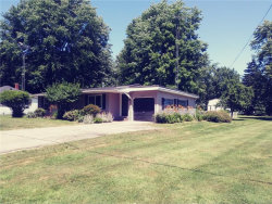 Photo of 7241 CHERRY ST, Port Sanilac, MI 48469-9659 (MLS # 21419646)