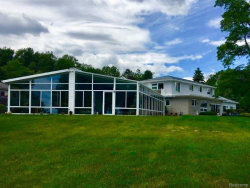 Photo of 3590 N LAKESHORE RD, Deckerville, MI 48427 (MLS # 21429461)
