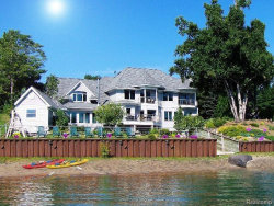 Photo of 3864 LAKESHORE RD, Deckerville, MI 48427- (MLS # 21445096)