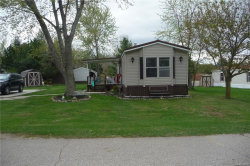 Photo of 5404 PERRY ST, Croswell, MI 48422-9606 (MLS # 21446558)