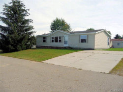 Tiny photo for 2220 BART ST, Croswell, MI 48422-9791 (MLS # 21526737)