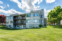 Photo of 7226 SECOND ST, Unit#7226, Burtchville, MI 48059-1903 (MLS # 21563040)