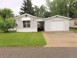 Tiny photo for 2253 BART, Croswell, MI 48422- (MLS # 21613567)
