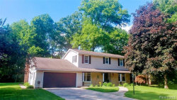 Photo of 8388 WESTWOOD ST, Ida, MI 48140-9704 (MLS # 21614421)