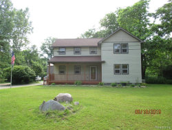 Photo of 10084 MCKEAN RD, Willis, MI 48191-9769 (MLS # 21619608)