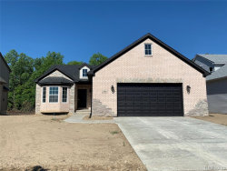 Photo of 541 FALCON DR, Dundee, MI 48131- (MLS # 30782863)