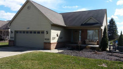 Photo of 37450 Lilac Ln., Richmond, MI 48062 (MLS # 31316153)