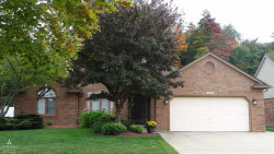 Photo of 14628 Emerson Dr, Sterling Heights, MI 48312 (MLS # 31333538)