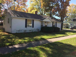 Photo of 2560 Black River St., Deckerville, MI 48427-9320 (MLS # 31333611)