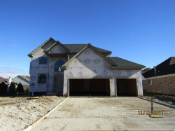 Photo of 53580 Meadow View, New Baltimore, MI 48047 (MLS # 31335293)