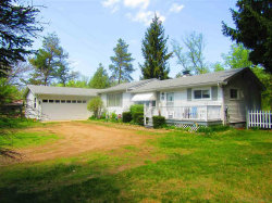 Photo of 2970 N Lakeshore, Deckerville, MI 48427 (MLS # 31346590)