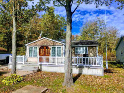 Tiny photo for 7337 Birchwood, Lexington, MI 48450 (MLS # 31363092)